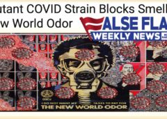 FFWN: Smell the New World Odor!